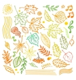 Colorful floral collection with leaves and vector image vector image