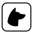 dog symbol icon square flat art design color vector image