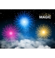Festive Brightly Colorful Shiny Firework on Dark vector image