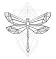 polygonal dragonfly vector image vector image