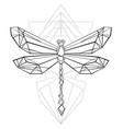 polygonal dragonfly vector image