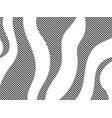 striped waves with black and white color zebra vector image vector image