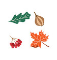 thanksgiving set onion cranberry tree leaf vector image vector image