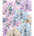 watercolor succulent plant pattern hand vector image