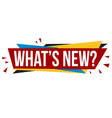 whats new banner design vector image