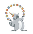 with a cheerful racoon playing with a balls vector image
