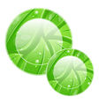 Eco friendly icon for web design leaves texture vector image vector image