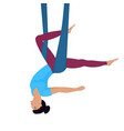 fly yoga girl hanging upside down in a hammock vector image vector image