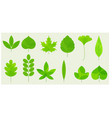 fresh leaves icons vector image vector image