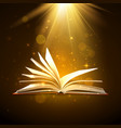 open book with shining pages in brown colors vector image