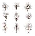 set different trees without leaves in autumn or vector image