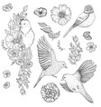 set of of birds and flowers vector image vector image