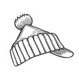 winter knitted hat vector image vector image