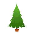 beautiful elegant green christmas tree vector image vector image