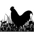 Cock in the meadow vector image vector image