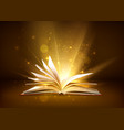 mystery open book with shining pages fantasy book vector image vector image