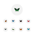 set of butterfly realistic symbols with sky animal vector image vector image