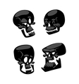 Skull face isolated on white vector image vector image