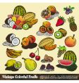 vintage colorful fruits collection vector image