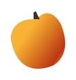 whole orange icon vector image vector image