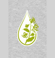 a drop of ylang ylang flower essential oil logo vector image vector image