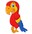 Cute macaw bird cartoon posing vector image vector image
