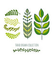ethnic green doodle leaves for spring or summer vector image vector image