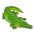 Green crocodile in cartoon style vector image vector image
