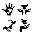 hands with pigeon icons set vector image vector image