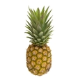 Mini pineapples with straw isolated on the white vector image