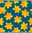 orange lily on indigo blue background vector image