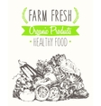 Organic farm food poster healthy sticker drawn vector image vector image