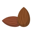 Pile of nuts vector image vector image