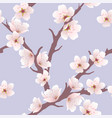 seamless floral background with cherry blossom vector image
