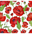 seamless pattern with poppies colorful hand drawn vector image