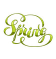 spring decorative lettering seassonal vector image vector image