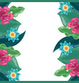 tropical flowers exotic foliage leaves vector image