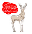 christmas reindeer isolated on white background vector image