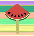 fresh slice of watermelon on colorful wood planks vector image vector image
