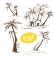 graphic palm trees vector image