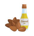 linseed oil in flat design vector image vector image