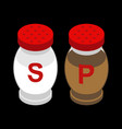 salt and pepper isometry salts and pepper vector image