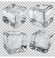 Transparent ice cubes in gray colors vector image vector image