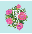 tropical floral summer design protea flowers vector image