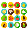 vegetables circle icons set vector image