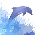 with dolphin and watercolor splashes for your vector image