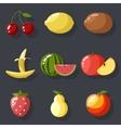 Fresh tasty fruit set apple cherry watermelon kiwi vector image
