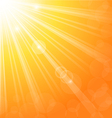 Abstract background with sun light rays vector | Price: 1 Credit (USD $1)