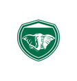 Elephant Head Tusk Front Shield vector image vector image