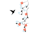 floral humming bird vector image